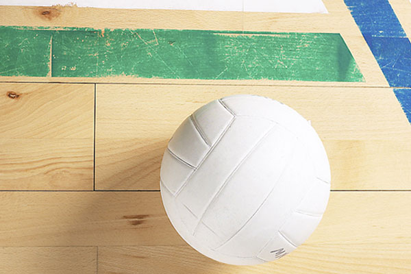 Volleyball: Impact continues success