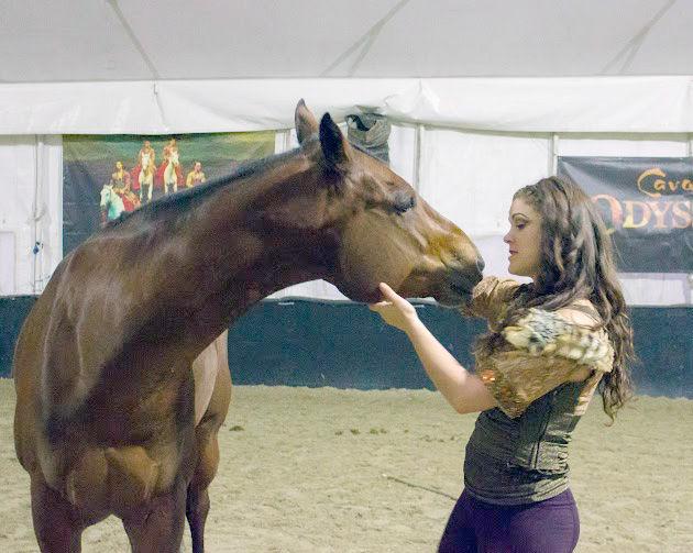 Cavalia horses vacationed near Hollister