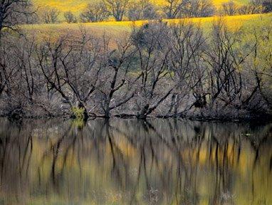 Hernandez Reservoir about 40 percent full; San Luis at 80 percent