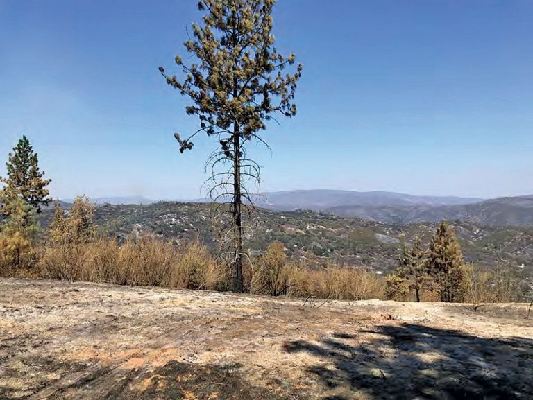 Water shortages and fires loom after a dry winter