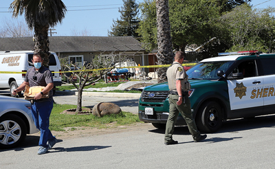 Watsonville homicide suspect arrested at Gilroy motel